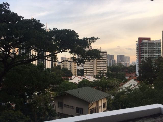 Big and Spacious Common Room near Orchard MRT station (No Owner and No Agent Fees) - Orchard 烏節路 - 整個住家 - Homates 新加坡